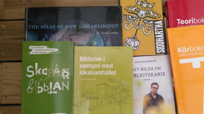 Så jag ska bli bibliotekarie?